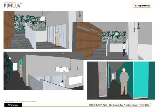 pose de papier peint lille 59800 nord d tail et. Black Bedroom Furniture Sets. Home Design Ideas