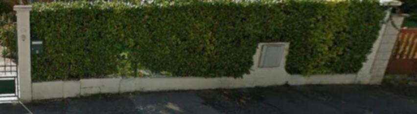 Remplacement clôture de laurier par clôture parpaing - 1