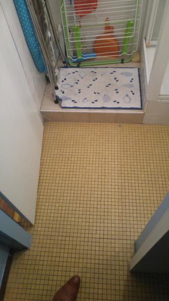 Refection salle de bain douche italienne faux plafond paris 12 75012 paris d tail et - Refection salle de bain ...